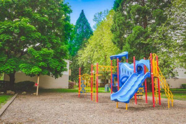 Driftwood Playground